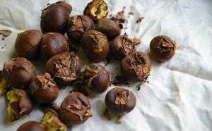 Winter-Warming Roasted Chestnuts